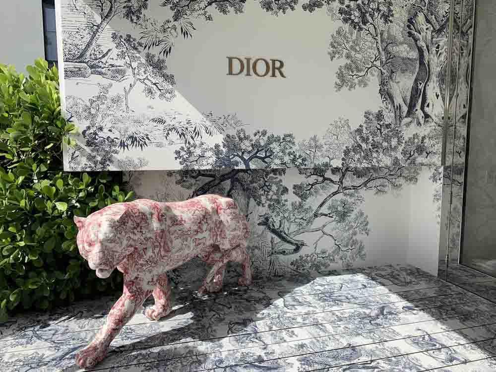 Darkhorse Dior Cafe Miami Floor Graphics Wall Wrap Custom Art