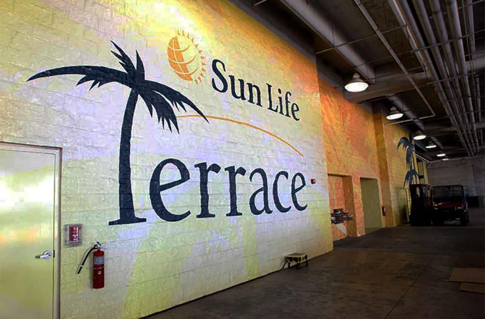 Darkhorse Sun Terrace Sun Terrace2 16